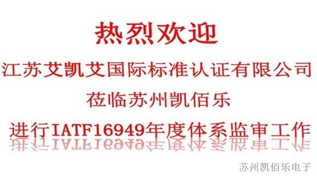 喜讯!苏州凯佰乐顺利通过IATF16949质量管理体系年度监审
