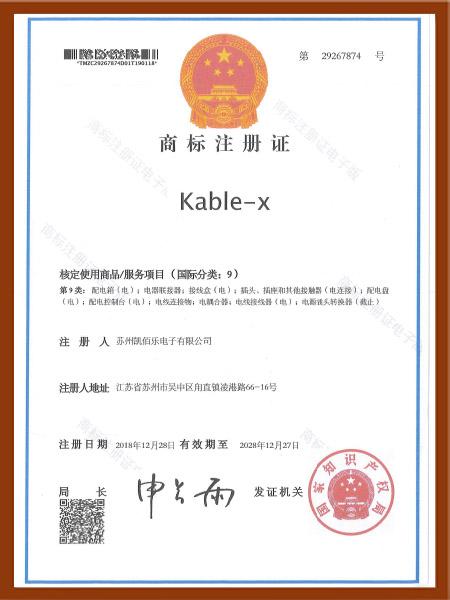 公司商标注册证1
